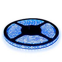 Светодиодная лента LED 3528 Blue 60 12V без силикона, дюралайт