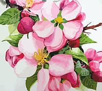 Набір-стандарт картина за номерами Яблуневий цвіт