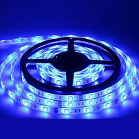 Светодиодная лента с влагозащитой LED 3528 Blue, дюралайт в силиконе 5м