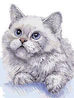 Рисование по номерам AS0311 Белый кот 30*40см