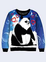Свитшот Панда-мальчик