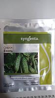 Насіння огірка Еколь F1 (Syngenta) 500 насіння - партенокарпік, ранній гібрид (40-44 дня)