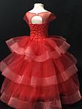 Пишне ошатне плаття Катрін на 4-5, 6-7, 8-9 років, фото 2