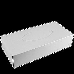 Салфетки косметические 100л , 2-х сл белые (пенал)