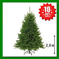 Искусственная сосна Forest Frosted 2.6 м Зеленая с инеем, фото 1