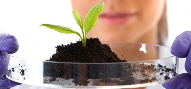 Агрохимический анализ почвы СТАНДАРТ
