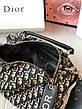 Женская стильная сумка Dior, фото 2