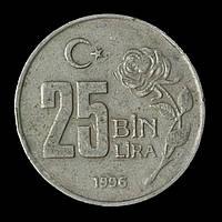 Монета Турции 25000 лир 1996 г., фото 1