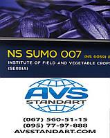 Соняшник НС 6059 Сумо 007 стійкий до посухи, вовчка рас A-F+, гранстару 50 грам. 50ц/га, Преміум обробка, фото 1