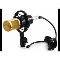 Микрофон студийный D.J.Music M-800