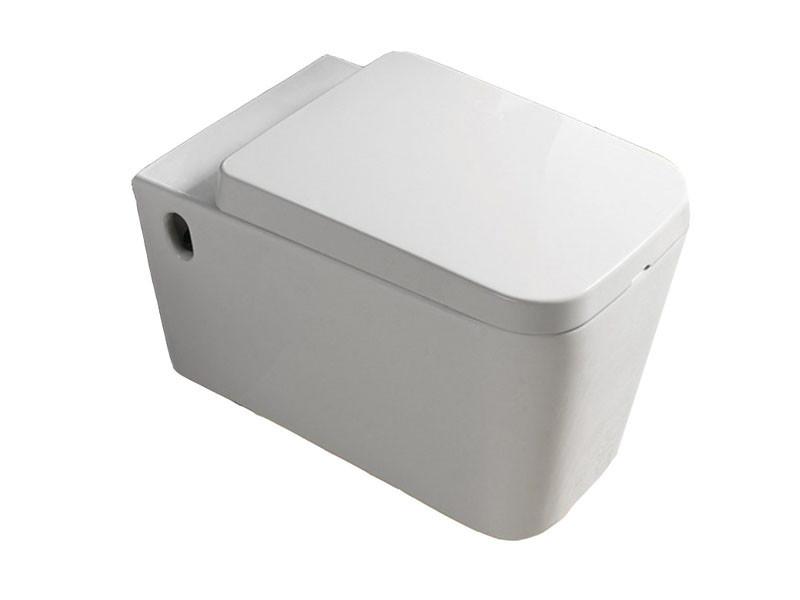Унитаз NEWARC Aqua 9423W с сиденьем Soft Close дюропласт белый матовый