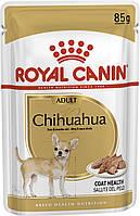 Паучи Royal Canin Chihuahua Adult для взрослых собак породы чихуахуа 85 г