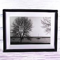 Фотокартина черно-белая, 43*33 см