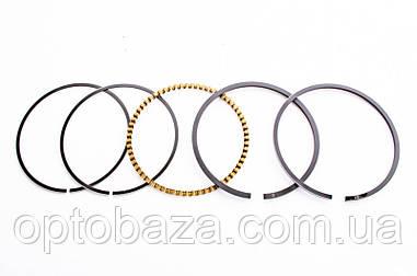 Поршневые кольца(61 мм) для вертикального двигателя 1P61FA