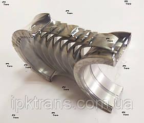 Вкладыши коренные двигателя NISSAN K25 (+0,25) 12233-FY500, 12233FY500