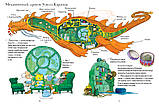 Детская книга Невероятная история о гигантской груше Для детей от 3 лет, фото 2