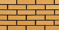 Кирпич клинкерный Керамейя Клинкерам 250x120x65мм Янтарь Пр 1 36%, фото 1