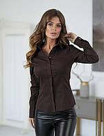 Классическая женская котоновая блузка с длинным рукавом шоколад 42 44 46 48, фото 1