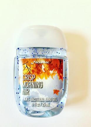 Санитайзер для рук bath & body works - crisp morning air 29 ml