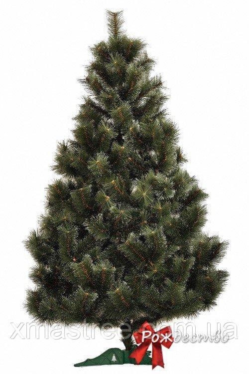 Искусственная елка Заснеженная сосна 180 со снегом