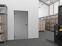 Двери техническая DoorHan ширина 980мм высота 2050мм одностворчатая глухая