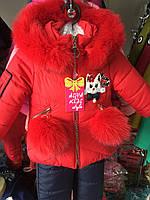 Детский зимний комбинезон для девочек «Мяу» оптом, фото 1