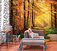 Фотообои  Осень в лесу арт.31191