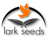 Семена ЛАРК СИДС США
