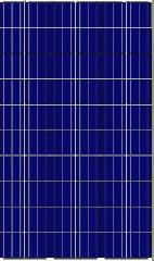 Сонячна панель Leapton LP60-285P / 5 BB, 285 Вт, Poly