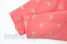 Комплект для девочки 4 в 1 Маленькие бабочки Berni, фото 2