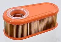 Овальний повітряний фільтр Briggs Stratton, 140x70x57 мм (795066)
