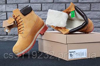 Мужские ботинки зимние Timberland Ginger (иск.мех) (рыжий)