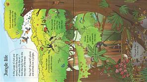 Look inside the Jungle, фото 3