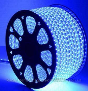 Светодиодная лента LED 5050 Blue, дюралайт 100 метров