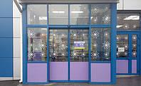 Автоматические раздвижные двери Tormax WD 2201 (Швейцария)*, фото 1