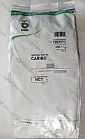 Семена кориандра  Карибе CARIBE 500г (кинза), фото 1