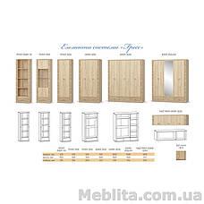 Шкаф 2Д1дз3Ш Гресс Мебель-Сервис , фото 2