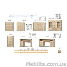 Шкаф 2Д1дз3Ш Гресс Мебель-Сервис , фото 3