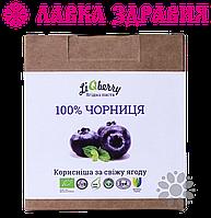 Черничная паста LiQberry 550 мл, фото 1