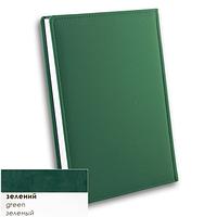 Датированный ежедневник на 2020 год А5  Winner Бриск зеленый