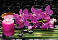Фотообои флизелиновые 3D цветы 254х184 см Орхидеи и свеча (3399.21298)