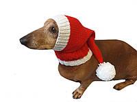 Новогодняя шапка санты для маленькой собаки или кота