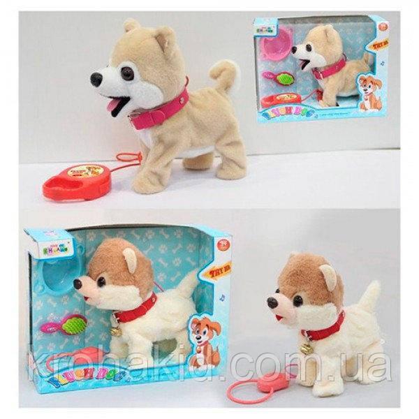 Детская музыкальная собачка 22см на поводке MP 0201: ходит, гавкает, машет хвостиком, кивает головой