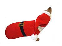 Новогодний костюм Санты для таксы шапка и свитер
