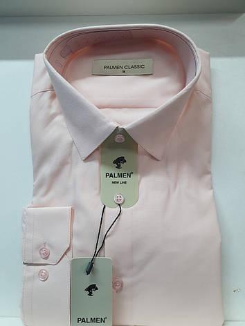 Рубашка однотонная Palmen, фото 2