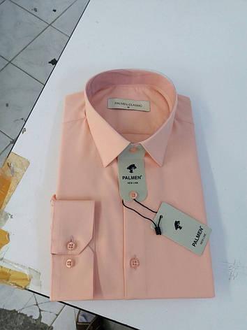 Рубашка однотонная для мужчин Palmen, фото 2