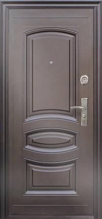 Китайские наружные утепленные входные двери ААА 021 на улицу, фото 2