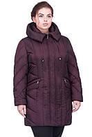 Модная курточка с капюшоном большого размера