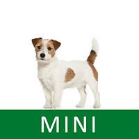Royal Canin MINI (для собак от 4 кг до 10 кг)