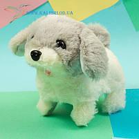 Мягкая игрушка собачка механическая, игрушка собачка ходит и лает, собачка ходилка CO-5-11, фото 2